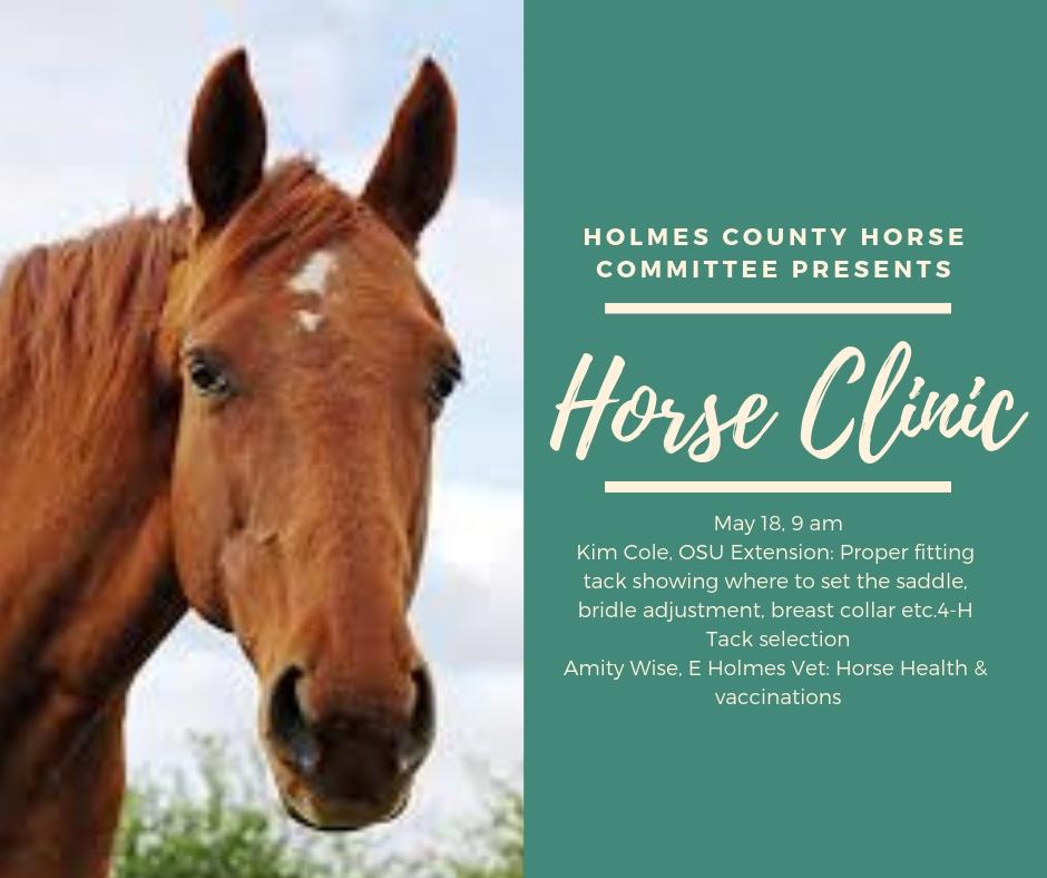 Horse Clinic 2019